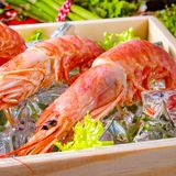 Cooked argentine red prawns with salad on the ice Royalty Free Stock Photography