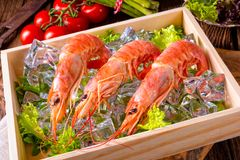 Cooked Argentine Red Prawns With Salad On The Ice Royalty Free Stock Image