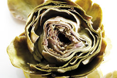 Cooked Artichoke, close-up Stock Photos