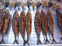 Cooked barbecued fish, Thailand. Cooked barbecued fish for sale in a market in Bangkok, Thailand Royalty Free Stock Photos
