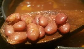 Cooked Beans closeup Stock Image