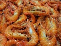 Cooked Black Tiger Shrimp Stock Images