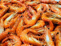 Cooked Black Tiger Shrimp Royalty Free Stock Images