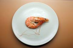 Cooked, boiled, steamed shrimp, prawn Stock Images