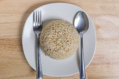 Cooked Brown Rice Royalty Free Stock Images