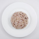 The cooked brown rice Stock Photo