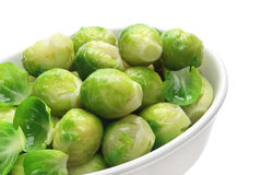 Cooked brussels sprouts Royalty Free Stock Image