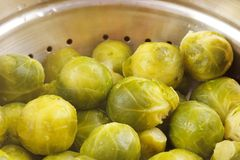 Cooked brussels sprouts Stock Photography