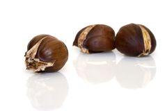 Cooked chestnut Royalty Free Stock Photo
