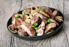 Cooked chicken liver in frying pan Stock Image