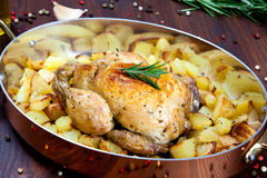 Cooked chicken thigh with a boundary of corn cob and salad Royalty Free Stock Photos