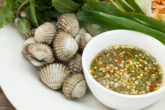 Cooked cockle with seafood sauce Stock Image