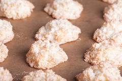 Cooked coconuts cookies Stock Images