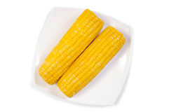 Cooked corn cob Royalty Free Stock Photo