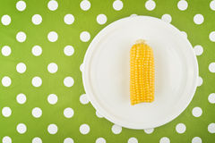 Cooked Corn maize cob half on a plate Royalty Free Stock Image