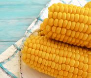 Cooked corn, a plate autumn healthy natural agriculture ingredient food appetizer on a blue wooden background,. Cooked corn a plate on a blue wooden background stock photography