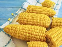 Cooked corn, a plate autumn healthy natural ingredient food appetizer on a blue wooden background,. Cooked corn a plate on a blue wooden background autumn royalty free stock image