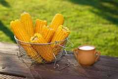 Cooked corn. On wooden table in the garden Royalty Free Stock Images