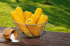 Cooked corn Royalty Free Stock Photo