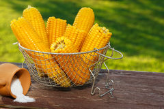 Cooked corn Stock Photos