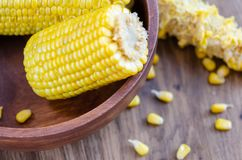 Cooked corncobs on a dark wooden plate, stock photography