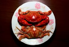 Cooked crab Royalty Free Stock Photography