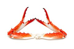 Cooked crab claw isolated on white background Royalty Free Stock Image