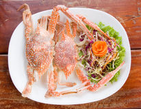 Cooked crabs Royalty Free Stock Photo