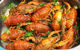 Cooked crawfish. Tasty cooked crawfish with herbs Stock Image