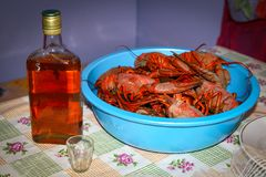 Cooked crawfish, delicacy. royalty free stock photography