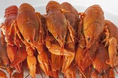Cooked crawfish pile closeup Stock Photos