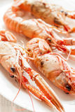 Cooked crayfish. Some fresh and cooked crayfish tapas, ready to eat Stock Images
