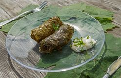 Cooked dolma in pot and plate Stock Photo