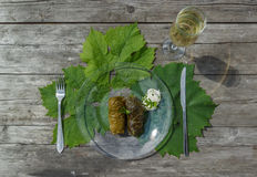 Cooked dolma in pot and plate Stock Images