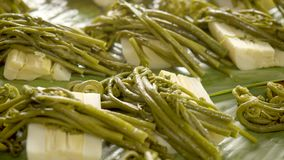 Cooked Edible Wild Fern. Preparation Of Cooked Edible Wild Fern With Palmetto stock video