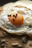 Cooked egg Stock Photos