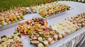 Cooked festive treats for guests on the occasion of the wedding. Beautifully decorated buffet. Nature. Celebration. Cooked festive treats for guests on the stock video