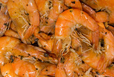 Cooked fine fresh shrimps with herbs, spices and salt Stock Photo