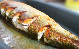 Cooked fish. With oil in frying Stock Images