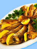 Cooked Fish 2 Stock Image