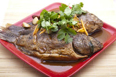 Cooked fish royalty free stock images