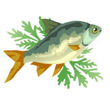 Cooked fish with dill, vector icon food.  Stock Photo