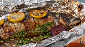 Cooked fish mackerel on the grill Royalty Free Stock Photos
