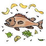 Cooked Fish With Potatoo Chips Herbs Spices Lemon. Vector Seafood Realistic Illustration. Fresh Fish With Herbs Spices and Lemon. Vector Seafood Doodle Style Royalty Free Stock Images