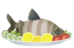 Cooked fish and raw vegetables. On a plate royalty free illustration
