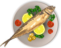 Cooked fish and raw vegetables on a plate. Mackerel on a plate with lemon, tomatoes and herbs Royalty Free Stock Image