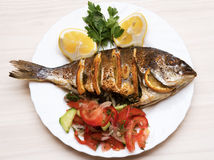Cooked fish sea bream fish. Royalty Free Stock Photo