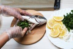 Cooked fish sea bream fish. Stock Image