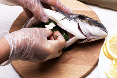 Cooked fish sea bream fish. Royalty Free Stock Photography