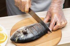 Cooked fish sea bream fish. Stock Photos